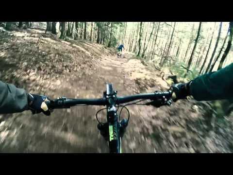 Mtb enkelt trail Pfalz