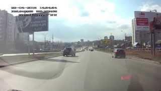 Ижевск, сбили собаку на дороге 22.04.2015г