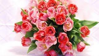 50 самых Прекрасных букетов цветов! С 8- Мартом!
