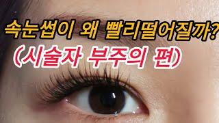 속눈썹빨리떨어지는 이유5가지(시술자부주의)/속눈썹 유지…