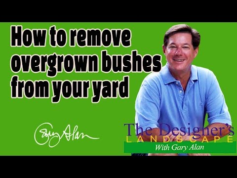 How to remove overgrown bushes from a lawn