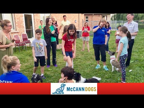 Dog Safety For Kids With The Burlington Humane Society Kids Club