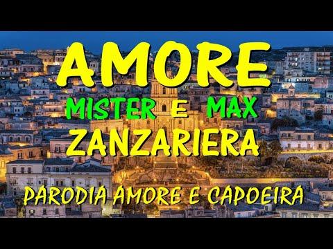 Mister Max - Amore e zanzariera - parodia amore e capoeira -  (Ufficiale 2018)