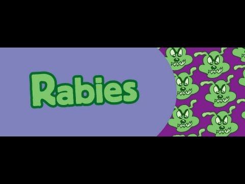 rabies  - kids education video