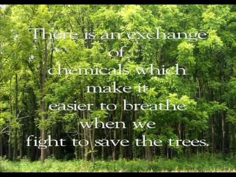 Save the trees - YouTube
