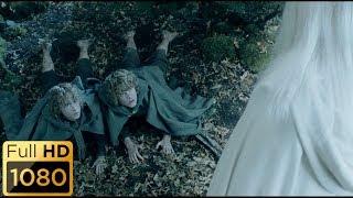 Энт отводит Мерри и Пиппина к Гэндальфу. Властелин колец: Две крепости.