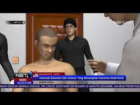 Indonesia Bukan Satu Satunya Negara Yang Menerapkan Kebiri Kimia - NET24