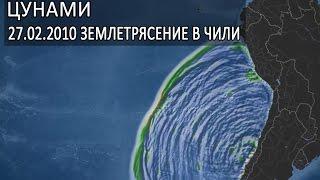 цунами. Высота волны цунами 2010 в Тихом океане. Землетрясение в Чили 27 февраля 2010 года