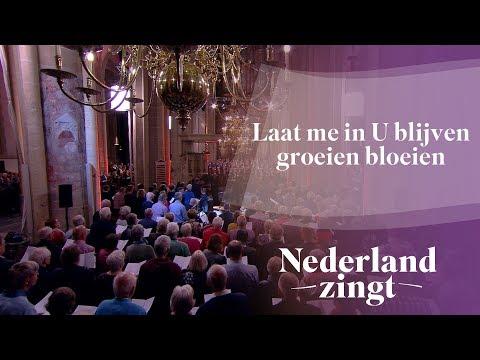 Nederland Zingt: Laat m 'in U blijven groeien bloeien