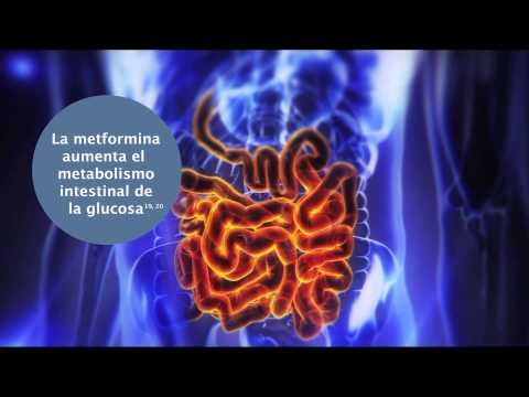 Видео Metformin lich 850 am radio