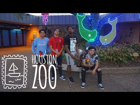WE EXPLORED THE HOUSTON ZOO !!
