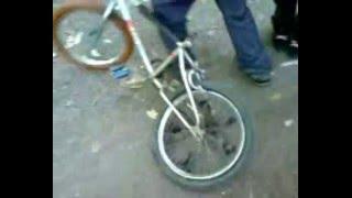 Kvalitni kolo