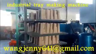 paper seeds tray forming machine-industrial tray forming machine