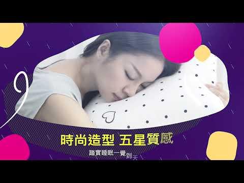 【BEST寢飾】現貨 時尚抗菌水洗枕 飯店枕 民宿愛用 枕頭 枕芯 兩入免運