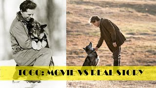 Togo Movie vs Original Story || A must Watch for Dog Lovers || True Story ||
