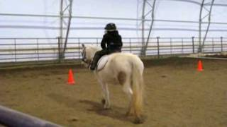 Beginner Riding Lesson - Seatwork on the Lunge, Learning How to Post