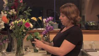 Gardening Tips & Tricks : How to Clean a Plant