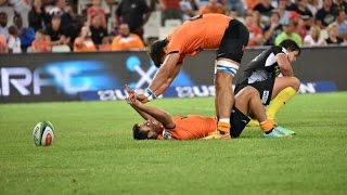 Sunwolves lose to Lions