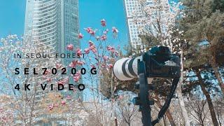 영상촬영에도 매력 있는 망원렌즈 SEL70200G / …