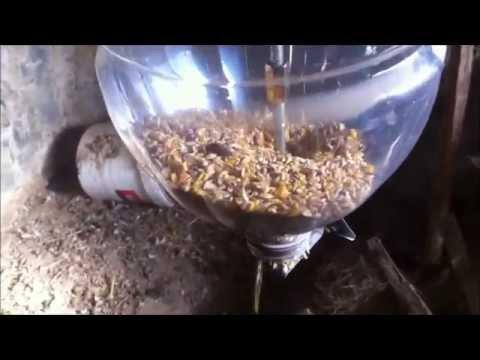 Homemade Gravity Fed Dog Food Dispenser