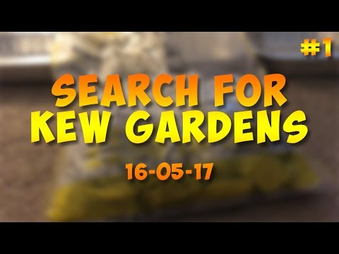 UK Coin Hunting - £230 in 50Ps - Search for Kew Gardens #1 [