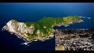 САМЫЙ СТРАШНЫЙ ОСТРОВ В МИРЕ | Змеиный остров Кеймада-Гранди