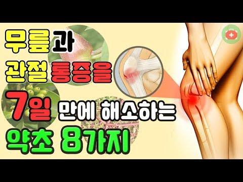 무릎과 관절 통증을 7일 만에 해소하는 약초 8