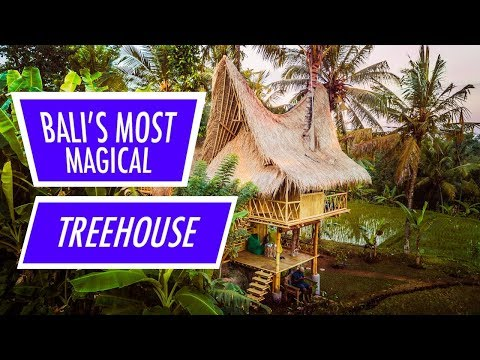 Bali's Most Magical Airbnb Treehouse!!!