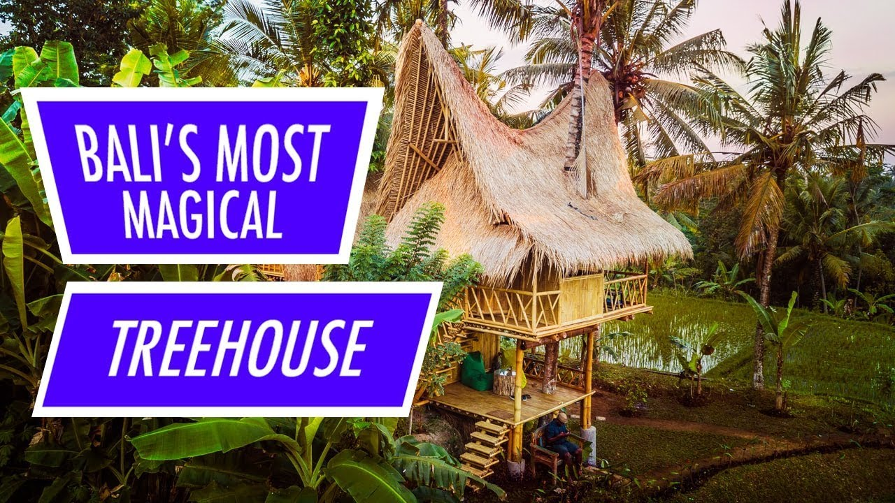 Bali S Most Magical Airbnb Treehouse Youtube