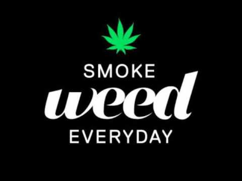 Smoke Weed Everyday (Download link in comments)