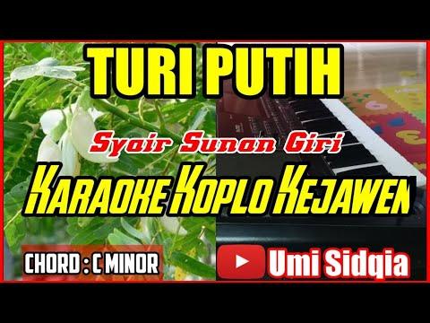 turi-putih-karaoke-versi-koplo-kejawen-cover-korg-pa-700-|-sholawat-koplo-terbaru-2020
