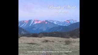 Imre Peemot - Breath of wind