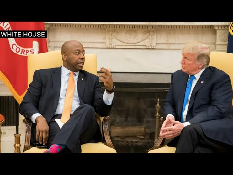 """Sen. Tim Scott: """"the people will decide"""" if Pres. Trump has regained moral authority"""