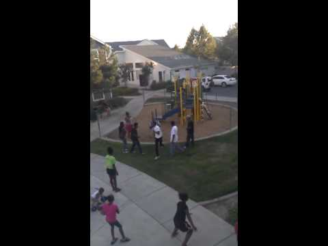 Fight in the Apts