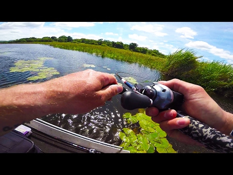 Bass Fishing on a TINY African Boat