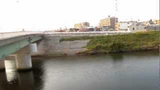 天白川 天白橋 東側 ② 釣り ポイント 名古屋市緑区鳴海町