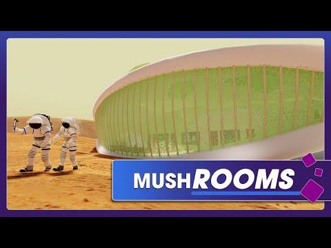 Self-replicating, Self-repairing Planetary Habitats Made of Fungus