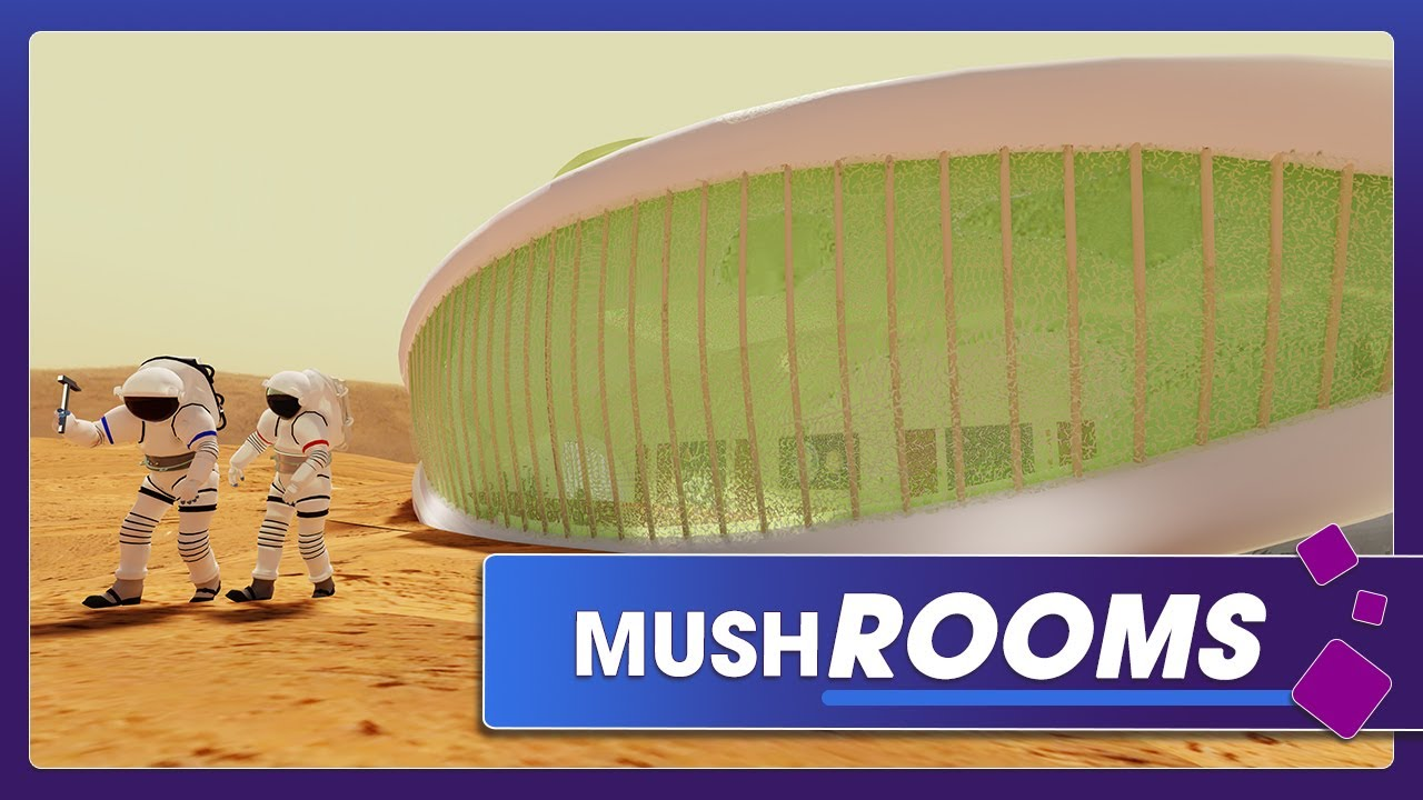 Future Mars inhabitants could live in houses made of fungi - Teslarati