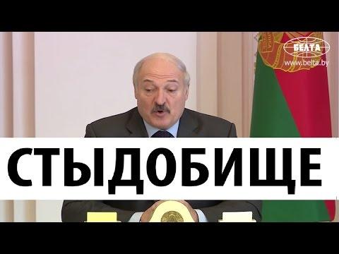 НУ И НОВОСТИ! Лукашенко в шоке от Беларуси! Что происходит в стране? - Cмотреть видео онлайн с youtube, скачать бесплатно с ютуба