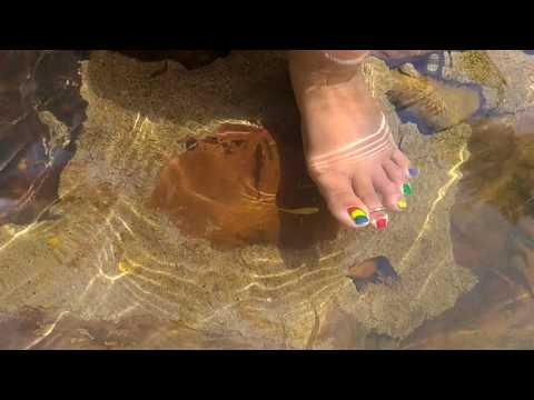 Fish pedicure at Bogatha waterfalls — July 2017