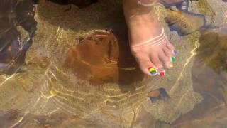 Fish Pedicure At Bogatha Waterfalls - July 2017