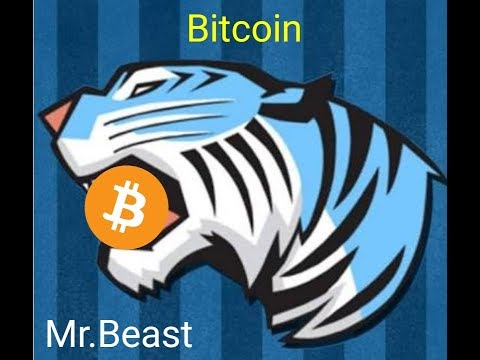 RECEIVED BITCOIN FROM MR BEAST!