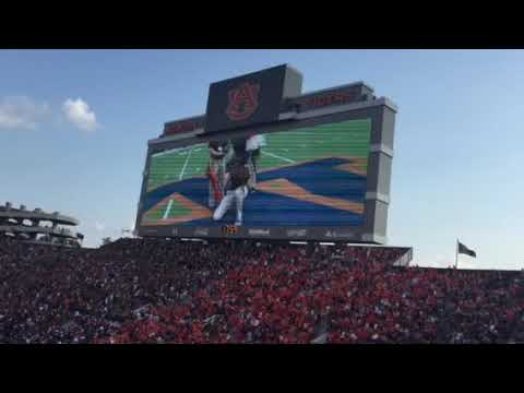 War Eagle fly down the field