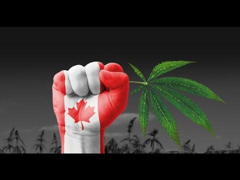 Announcing Legal Cannabis In Canada - What You Need To Know
