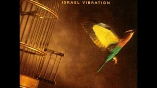 ISRAEL VIBRATION - Travelling Man (Free To Move)
