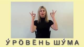 Учебный аудио-видео-словарь жестов (КУИМЦ). Психоакустика