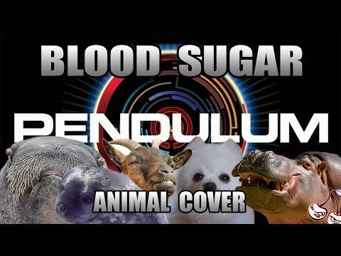 Pendulum - Blood Sugar (Animal Cover)