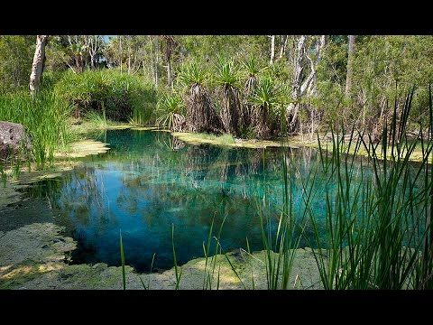 Highway 1: Great Australian road trip Ep2 Mataranka Springs