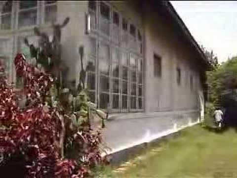 Sumbawa Trip Part 11 of 14 Palace and my birthplace