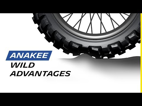 MICHELIN Anakee Wild : Radial advantages
